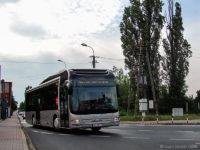 Hybryda w drodze z Torunia do zajezdni KM Płock