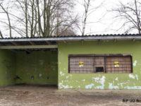 Stary wiato-kiosk w Siecieniu