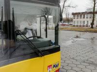 Zając Wielkanocny za kierownicą autobusu (źródło: FB KM-Płock)