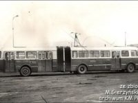 #239 - Historia płockich przegubowców rozpoczęła się w 1972 r. wraz z zakupem Jelczy 021 i AP02.