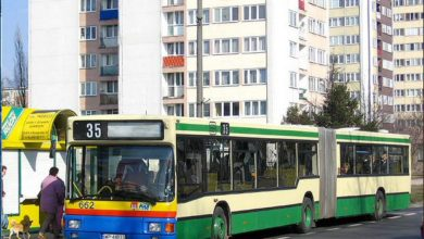 Photo of Kolorowe autobusy c.d.