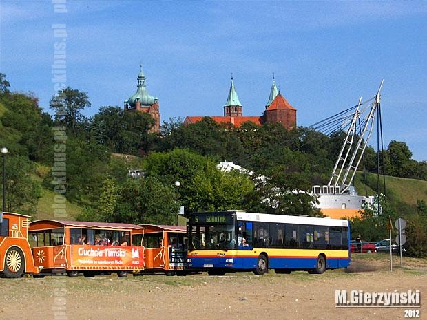 Photo of Linie sezonowe