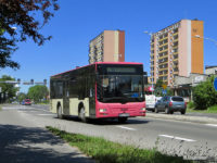 MAN Lion's City M (WPL 34299) na linii P4